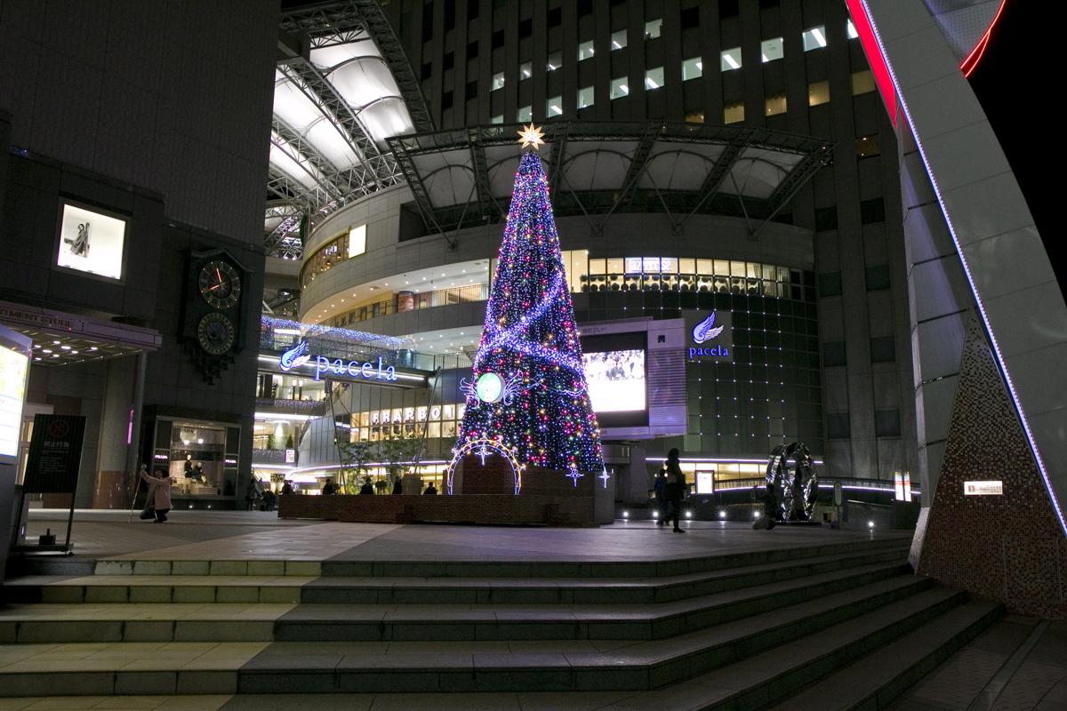 基町クレド・パセーラのクリスマスツリー 点灯は聖なる夜まで