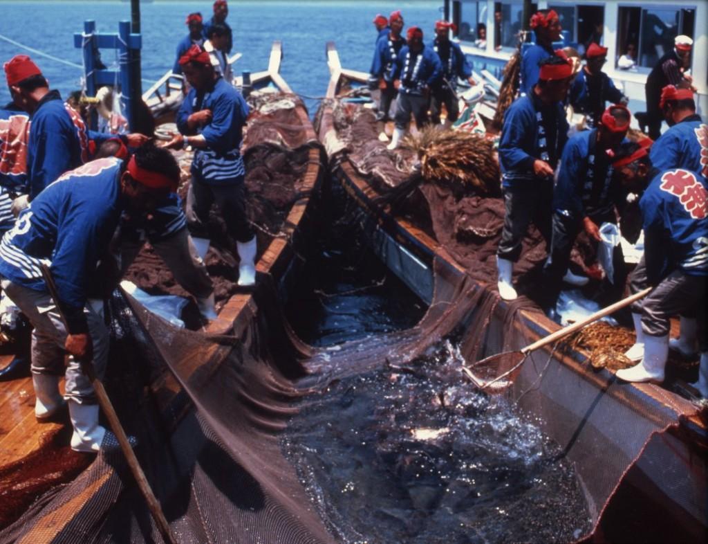 鞆の浦観光鯛網5