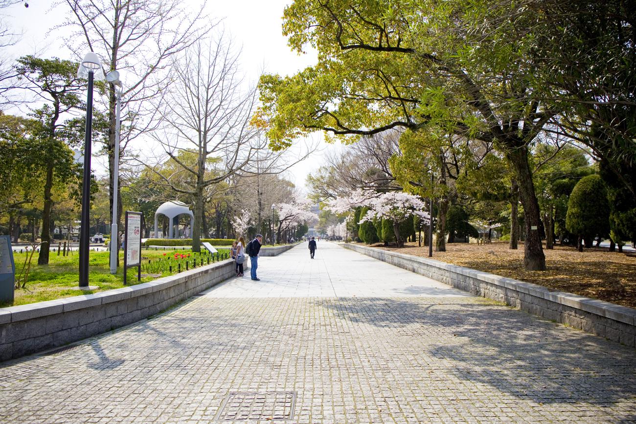 平和記念公園 桜2