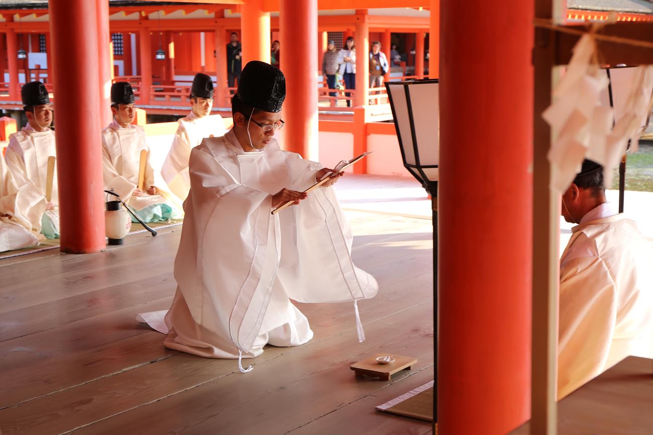 宮島厳島神社の桜花祭2