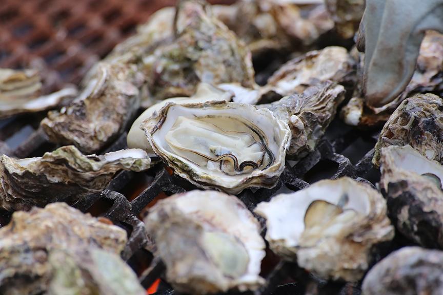 量 牡蠣 の ランキング 収穫 牡蠣がおいしい地域は?種類ごとで違う旬の時期や仕入れ方法